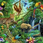 (A Visit to a Jungle) Essay on Jungle in Hindi