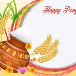 Essay on Pongal Festival in Hindi