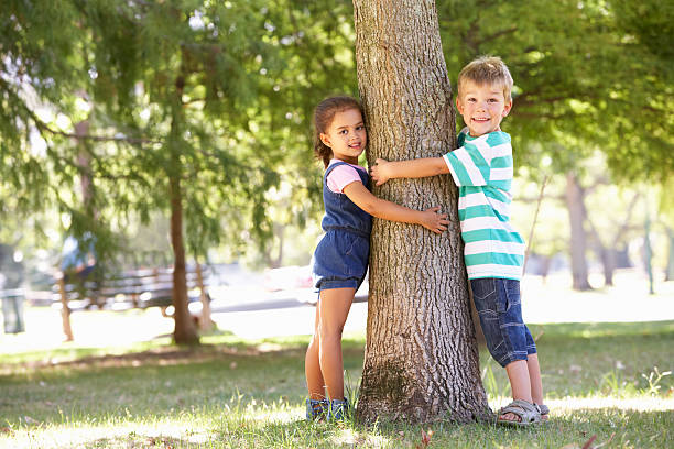 Essay on Trees Our Best Friends in Hindi Language
